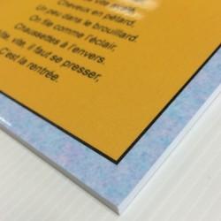 Panneau Forex 5mm